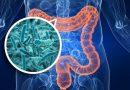التغير البنيوي في ميكروبيوم الأمعاء يرتبط بصحة العائل